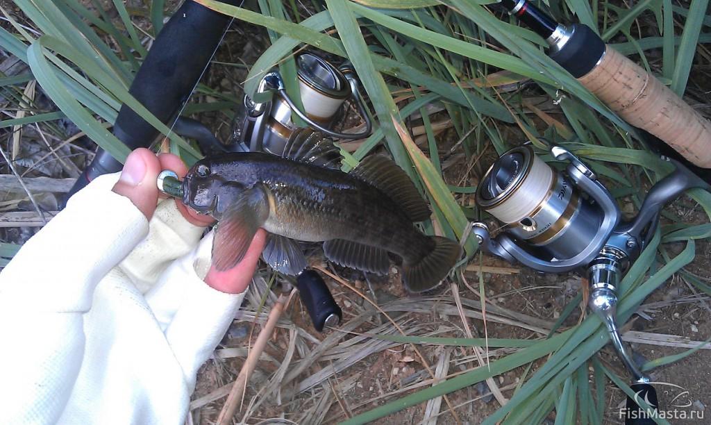 Все для рыбалки в волжском
