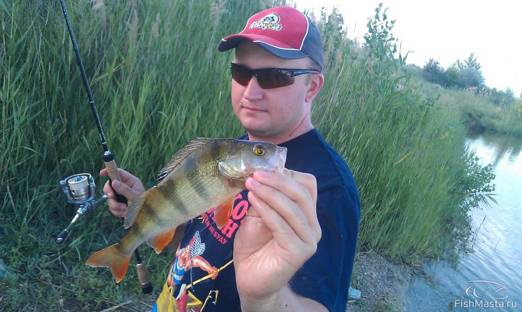рыбалка в волжском на ахтубе